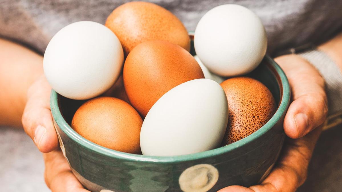 Szkolenie VOD: Jaja - rodzaje i zastosowanie w gastronomii
